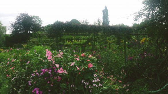 I dintorni di Parigi: Giverny e Versailles