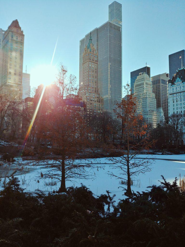 new york, Central Park innevato