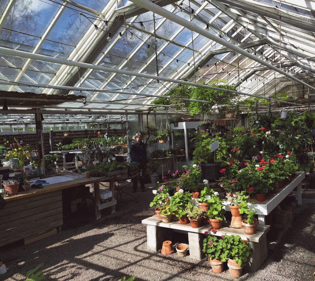 rosendals tradgard