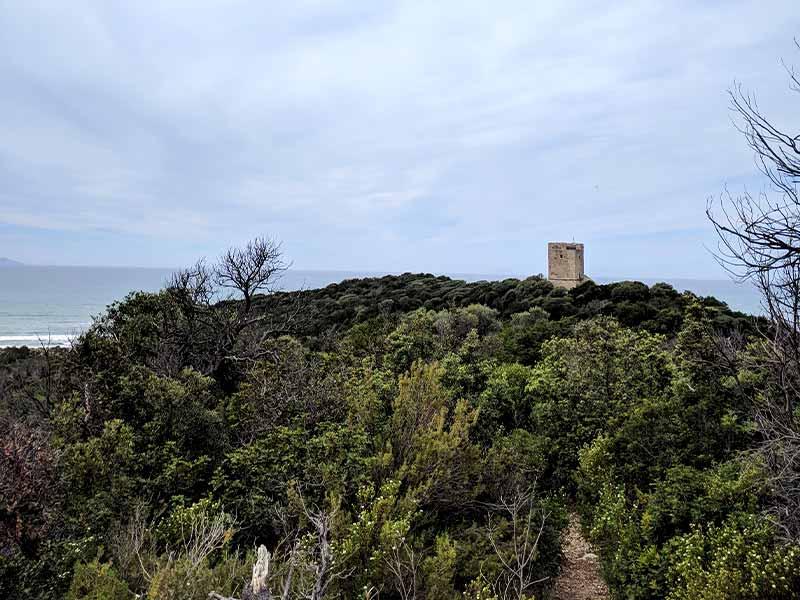 torre-collelungo-itinerario-a2-le-torri-maremma