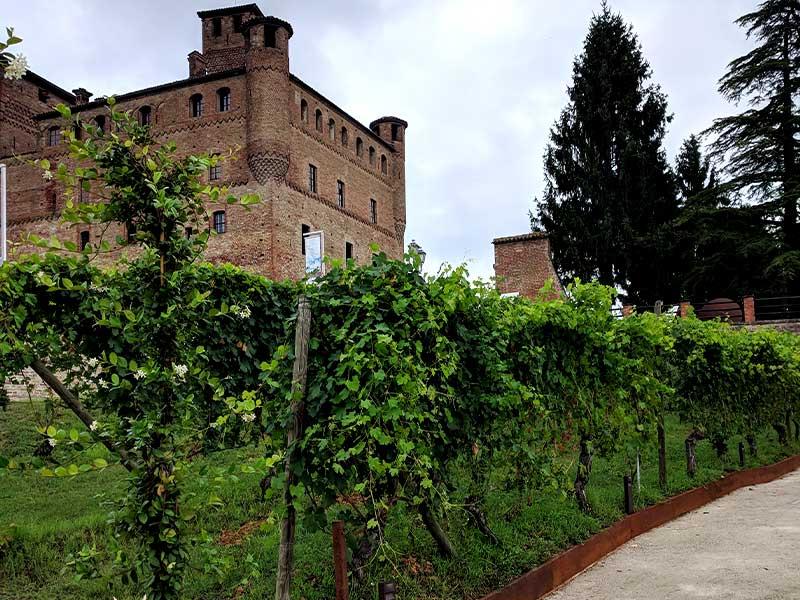 grinzane-cavour-itinerario-langhe-monferrato-alzati-e-viaggia