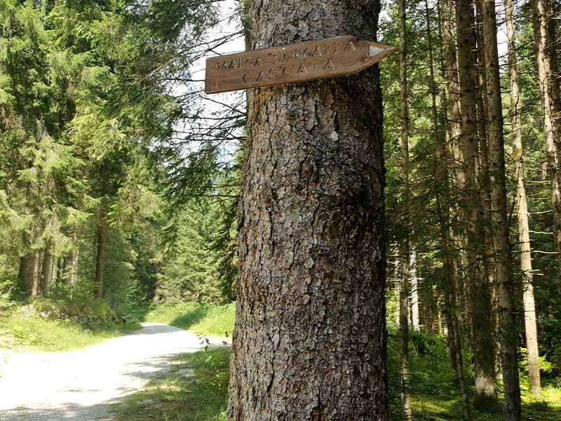 malga-forgazza-trekking